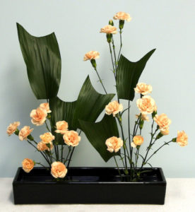 Gail's Strong Mass and Soft Mass arrangement made with aspidistra leaves and carnations.